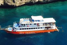 Similan islands dive safaris / www.similan-diving-liveaboard.com
