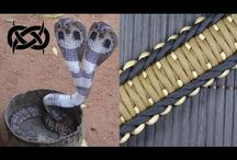 rigid king cobra