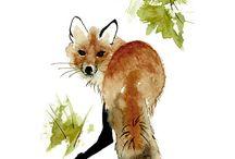 foxie loxie