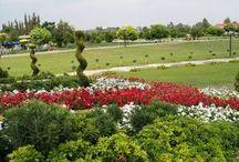 Adana Kebap ve Adana Kebap Tarifi / Adana kebap , Adana'da yenir... http://www.adanapark.net/