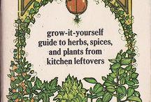 Gardening / by Rosemary Baker