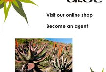 About Alcare Aloe. / The House of Aloes was founded in Albertinia - in South Africa's Western Cape province - in 1986. Since then, we have manufactured the finest skincare and health & wellness products from the aloe leaf. Order online: http://on.fb.me/1fJVdeb Become an agent: http://on.fb.me/1bxnP99 #aloe, #beauty, #shopping