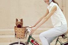 Bike Culture