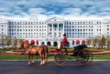 favorite hotels