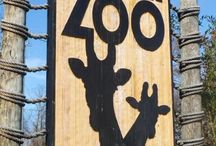 Nashville Zoo at Grassmere / by Suzan Hutchinson