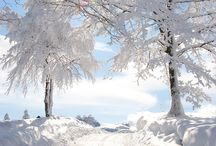 beautifulwinter