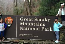 Great Smoky Mountains National Park / There is a reason why Great Smoky Mountains National park is the most visited and popular in the United States of America!