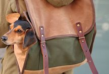 Boss Pet Gear / Pet fashion and accessories we covet