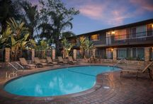 Buena Park apartments for rent / The best Apartments for rent in Buena Park, CA