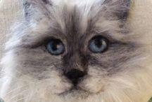 yün kece kedi köpek kuş baykuş