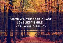 fall y'all / by Susan Powers