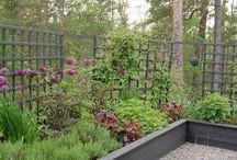 Garden designed by me