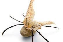 Stone & Leaf Insect