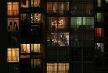 Window/窓/Fenster