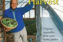 Earth Homes to Natural Living