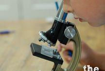 homeschool science / by Kelley Hill-Cate