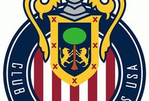Chivas USA / MLS Team / by Pele Lepew