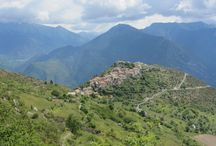 VERT / La région Provence-Alpes-Côte d'Azur en couleur : le vert