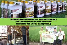 HUB 0851 0333 2222 ( TSEL ) Peluang Bisnis bagi Mahasiswa / Peluang Bisnis bagi Mahasiswa,Peluang Bisnis bagi Mahasiswa dengan Modal Kecil,Peluang Bisnis untuk Mahasiswa Pertanian,Peluang Usaha Bisnis bagi Mahasiswa,  Apakah GDM GDM merupakan Pupuk Bio Organik Cair yang di hasilkan dari bahan-bahan organik dan bakteri yang diperlukan oleh tanaman.  BERMINAT DENGAN PELUANG DARI KAMI HUBUNGI :  0851 0333 2222 ( TSEL ) http://peluangusahaagro.com/