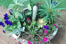 Gardening and Pots
