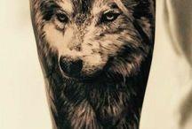 Wolf tetko