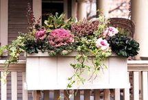 {SCHÖNES} Dekoration und Blumen