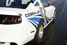 Mustang Cobra Jet / by Jonathan Fox