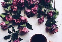 ♡ tea culture
