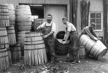 Wine History / by NZ Wine Directory (JB)