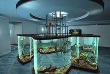 Akváriá ako stoly a steny