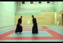 Fudoshin Ryu Amsterdam / Www.fudoshonryu.nl Sensei Ron de Boer 7th Dan aikijutsu and 5th Dan toide