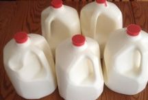 Raw milk and cultured / by Audrey Miller