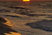 Ocean Goodness / Ocean Goodness