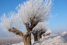 Winter Wonderland  / Wie denkt dat Zeeland alleen mooi is in de zomer, heeft het mis. De verschillende jaargetijden tonen de ware kleuren van Zeeland in al haar nuances. Laat je inspireren door het befaamde Zeeuwse licht en de eindeloze horizon.