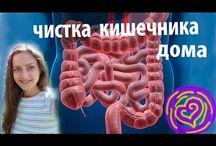 Чистка кишечника