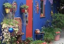 Color to the garden