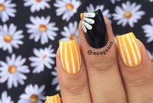 Nailse