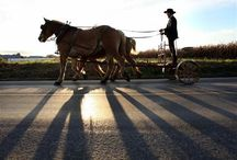 Amazing Amish / I have great admiration for the Amish! Their faith in God, simplicity, steadfastness, love for family and community, cooking, creative genius~ the list could be very long indeed. / by Tracey Devlin