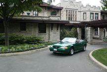Shades of Green Mustangs / Green Mustangs!  Shades of Green Mustang Registry <3