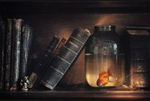 Still Life Photography Ideas / Ideas for props, backgrounds, etc, for Still Life Photographers