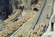 It happens in #Abruzzo