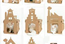 Cat :))
