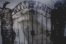 Alice in Wonderland / by Melissa Fedorchuk