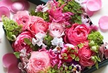 boxed, arranging flowers