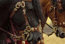 Larp horse bridle