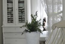 shabby chic / by nancy craddock