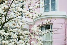 Maisons roses // Pink homes / De belles maisons, cottages... roses!