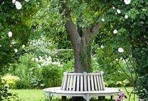 gardens, outdoor spaces