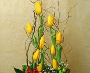 Floral Arrangements / by Heather Thatcher