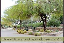 Travel Arizona / All about travel in Arizona